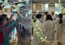 Proxectos: Análises Clínicas e Fotosíntese Artificial