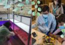 Proxectos: Árbores en tubo de ensaio e Controla e constrúe robots!